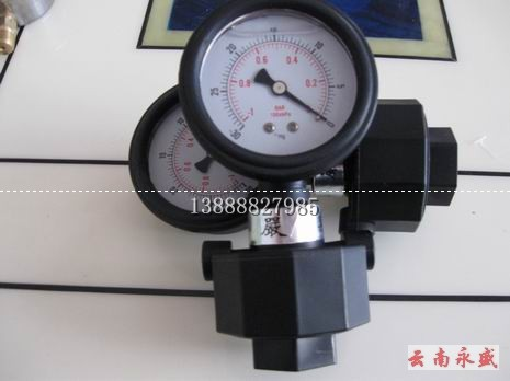 单面PP隔膜压力表图片/单面PP隔膜压力表样板图