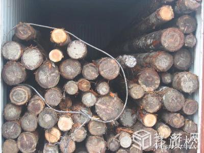 供应专业美国木材进口代理图片