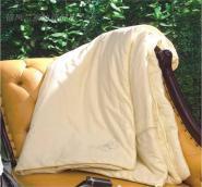 纯蚕丝被高支高密全棉100蚕丝图片