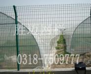 安平胜迈现货供应公路双边护栏网图片