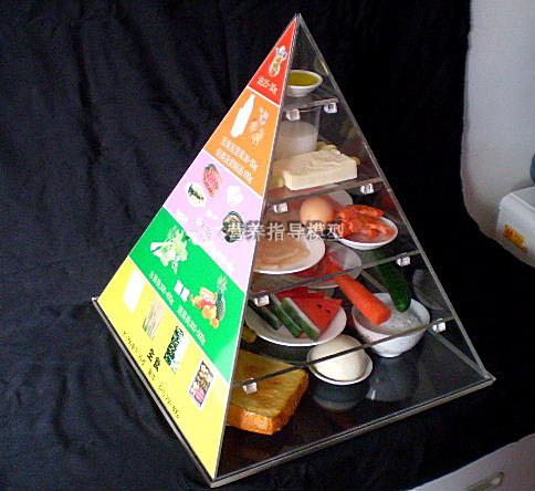 上海质真膳食平衡金字塔模型报价