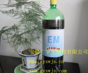 EM原露安徽广宇生物技术有限公司图片
