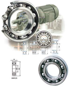 供应进口电机轴承FAG电机轴承TIMKEN电机轴承大连电机轴承批发
