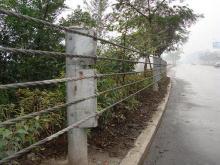 供应 绳索护栏