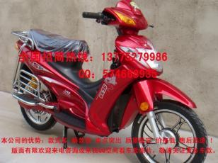 龙卫士红色电动车图片