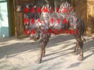 铜雕骆驼图片