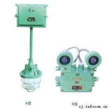 供应CBJ52,BAJ52防爆应急灯BAJ52