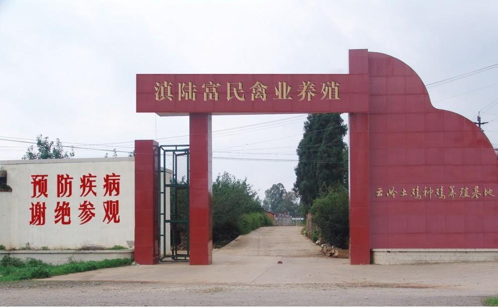滇陆富民禽业