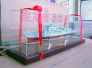 555昭通号1比200舰艇模型图片