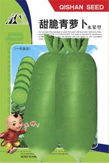 一代杂交水果型甜脆青萝卜种子