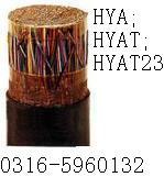 双铠双护套音频电缆ZRC-HYA图片
