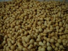 供应工艺葫芦原料