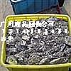 供應深圳廢金屬回收公司批發