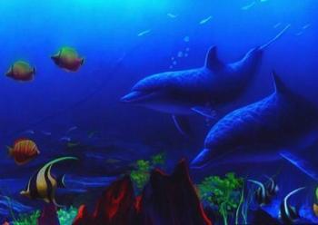 壁纸 海底 海底世界 海洋馆 水族馆 桌面 350_248