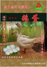 供应优质商品鹅蛋