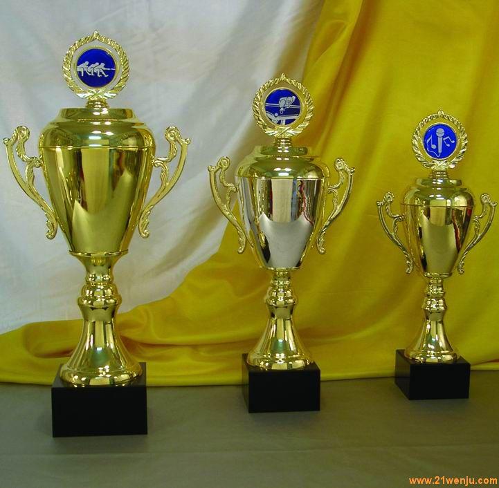 供应最佳供应商奖杯奖杯设计制作公司,金属奖杯,上海奖杯,江苏奖杯
