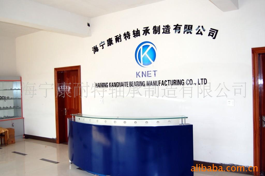 海宁康耐特陶塑轴承制造有限公司
