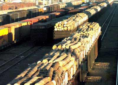木材进口代理