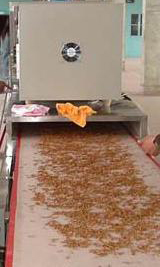 饲料干燥机