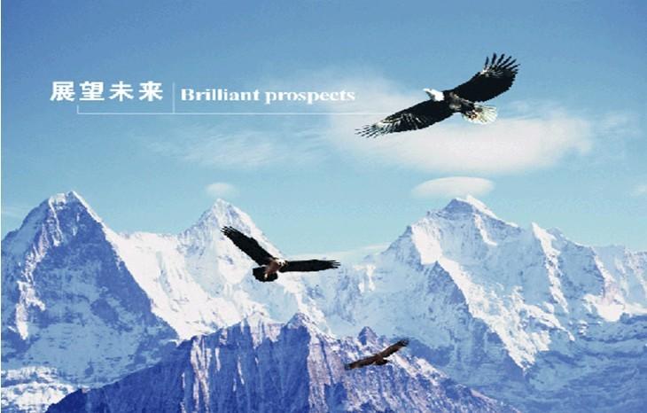 北京银海鹏飞科技发展有限公司