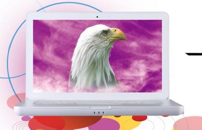 鹰派生产笔记本电脑15.6寸上网本电脑