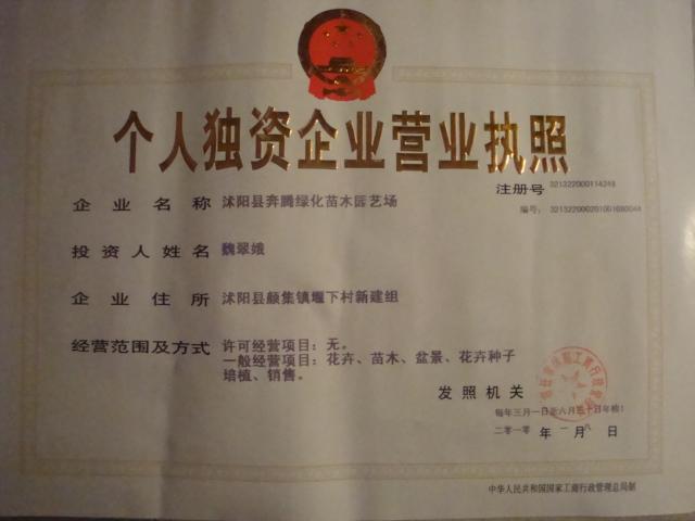 沭阳县好仁缘绿化苗木园艺场