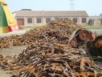 供应深圳整厂回收深圳有色金属回收