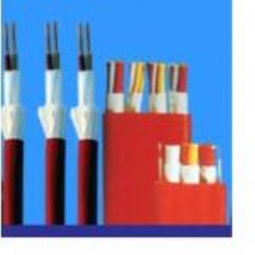 特种耐高低温-耐高压扁电缆-安徽图片/特种耐高低温-耐高压扁电缆-安徽样板图