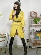 2010年最热销的韩版时尚风衣图片