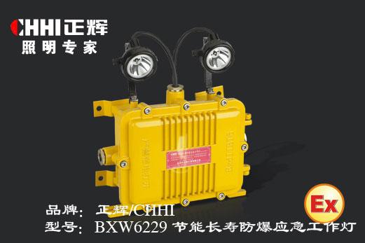 节能长寿防爆应急工作灯,防爆工作灯,节能灯,LED灯