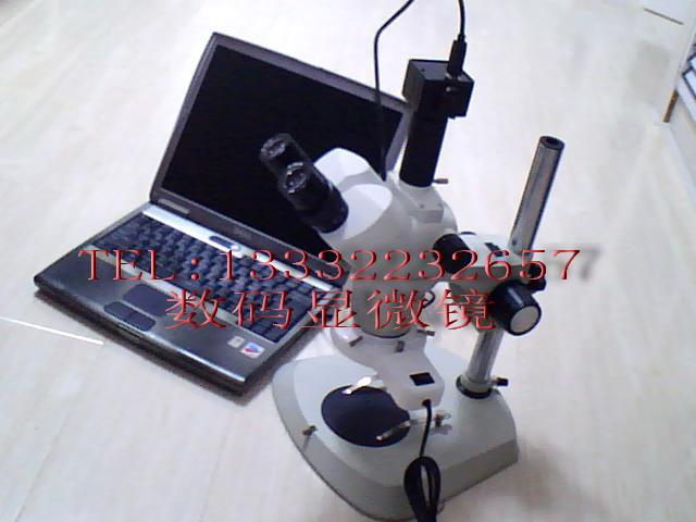体视显微镜图片 体视显微镜样板图 连续变倍体视显微镜 大...
