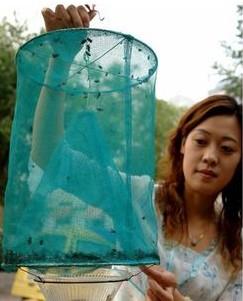请教:有jrs知道这种抓苍蝇陷阱的工作原理吗?