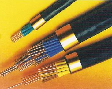 铠装计算机电缆DJYVP22地图片/铠装计算机电缆DJYVP22地样板图