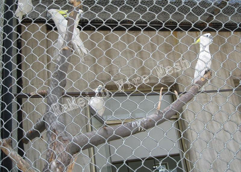 衡水市动物园锈钢绳网厂家