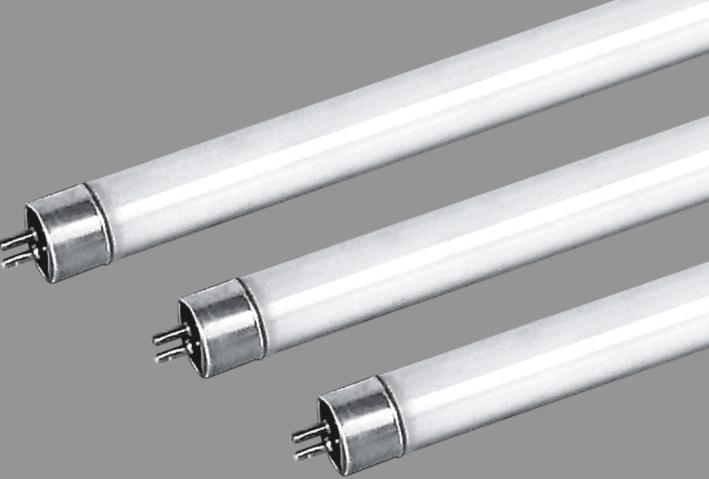 供应t4灯管图片